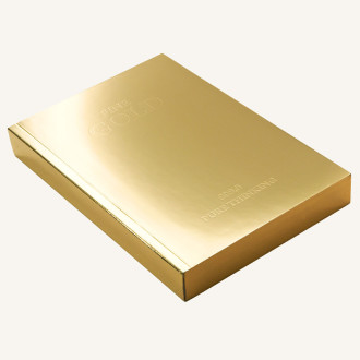 Slab-Notebook-Gold-2b