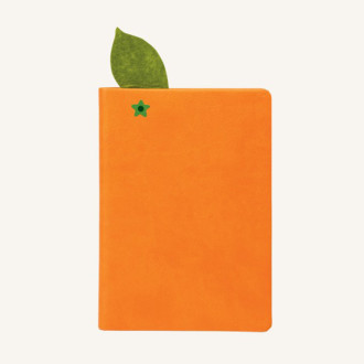 juicy-notebook-orange-1